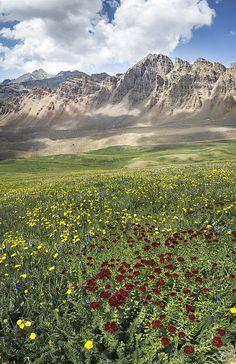 Castle Peak 14,265'. (far left) Elk Range