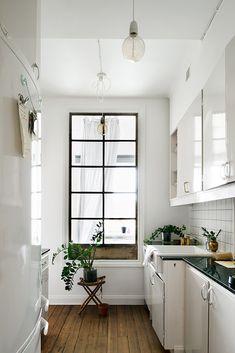 plant, interior, floor, small kitchens, black windows, small spaces, kitchen spaces, galley kitchens, white kitchens