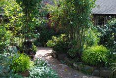 My garden, my refuge