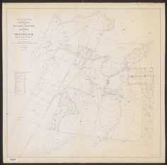 Topography of the Mansion Grounds and Vicinity at Montpelier, Orange County, Virginia. from Topography of the mansion grounds and vicinity at Montpelier, Orange County, Virginia ·  ·  · Albert and Shirley Small Special Collections Library, University of Virginia.