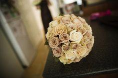 cream & latte roses