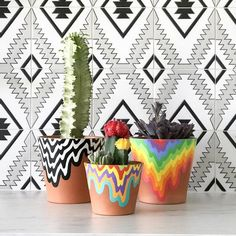 Created especially for LA Original, Los Angeles based artist Jen Stark hand painted terracotta pots in her signature optically teasing colorways. Available in two sizes in black and white or full color. Each pot is carefully hand painted with a cactus already planted in it. Due to this, these pots are available for lo