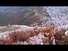 Winter Meets Fall atop Blue Ridge Parkway mountain nc mountain, carolina mountain