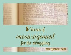 I have shared recently about my coming off of Effexor and the battle that has been for me physically and emotionally. I want to update that post with some encouragement for you. I know I am not alo...