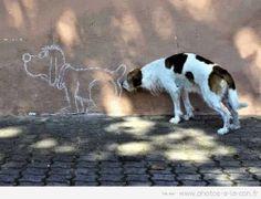 ART & PHOTOS Fabrizio Bordone - Community - Google+
