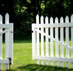 white picket fences, backyard, garden, gate