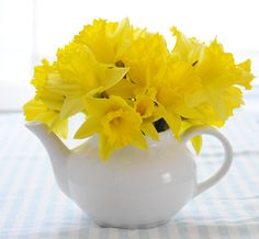Daffodils make pretty everyday arrangements or easy party centerpieces.