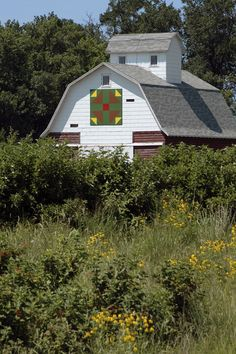 """hens and chicks"" barn quilt, Holland, Iowa"