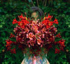 Nature's palette by Luís S. Tavares, via Flickr
