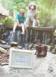 Best Pregnancy Announcement Ideas - Craftionary