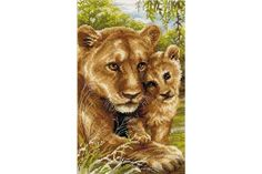 Riolis : Lioness with cub