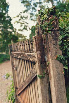 wooden gate, garden gates, old gates