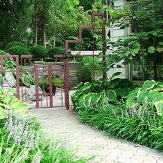 Liriope and Hosta. Landscape Hosta Design Ideas, Pictures, Remodel and Decor