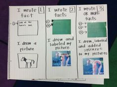 nonfiction writing chart