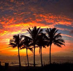 What a beautiful morning, very colorful, courtesy of FtLauderdaleSun