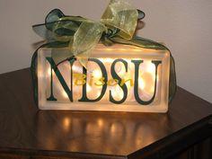 NDSU Bison block