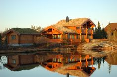 Dom drewniany z bali frezowanych, Jodła pospolita