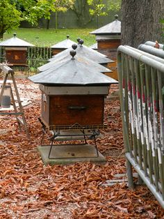 BEE HOUSE in Paris ... no colony collapse issues! Queens live long ... copper roof? pesticide free area ...