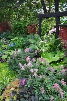 #shade gardening - astilbe, ferns, hosta and heuchera