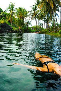 palm, life, dream, tropical beaches, summer