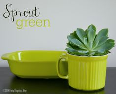 It is easy being green!  #CWColor  Easy Summer Entertaining with recipes and tips. #ad #plantoparty