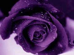 Sarah Brightman - This Love.