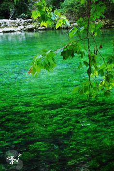 Fontaine De Vaucluse, France #green #vert #tourismpaca #tourismepaca #Vaucluse #FontainedeVaucluse #water #nature #landscape #paysage
