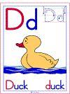 Letter D Duck Theme | Alphabet Preschool Lesson Plan Printable Activities and Worksheets