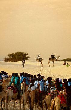 Preparándose para la carrera de camellos, Festival au Desert, Essakane -   Preparing for the camel race, Festival au Desert, Essakane (January 2004)    www.vicentemendez.com