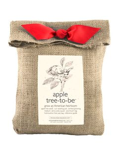 This DIY Apple Tree kit ($22.50) includes all the materials to grow delicious apples. Who wouldn't want that as a gift?