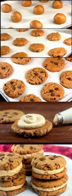 Flourless Peanut Butter Chocolate Chip Cookie Sandwiches, with Peanut Butter Cinnamon Cream Filling. Cookies alone are Gluten-Free and Dairy-Free. | http://parsleysagesweet.com | #peanutbutter #chocolatechips #cookies #glutenfree