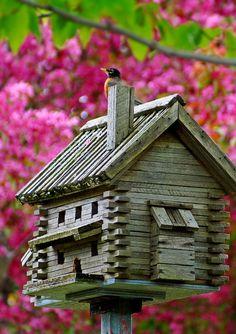 Log Cabin Birdhouse looks so sweet in the garden