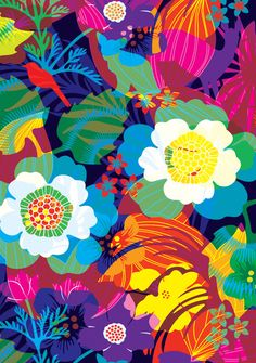 Contemporary Greeting Cards, Mini Cards, Postcards and Gift Wrap : BEAUMONDE   Flowerful