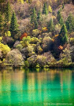 Panda Lake - Jiuzhai Valley National Park, China