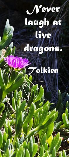 """Never laugh at live dragons.""  J.R.R. Tolkien -- Explore insightful quotations, both ancient and modern, on the creative process at http://www.examiner.com/article/forty-quotations-for-writing-inspiration"