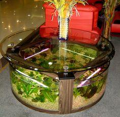 Table Aquariums