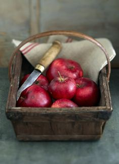 red, autumn, clutter, jeans, orchard