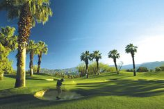 Golf,  Photo Credit: Palm Springs Desert Resort Communities Convention and Visitors Authority