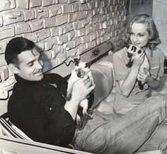 Gable & Lombard with siamese kitties