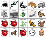 The Grouchy Ladybug – Icons to make an adapted book of The Grouchy Ladybug by Eric Carle