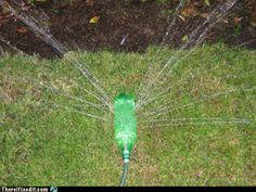 old soda bottle - sprinkler for the kids!
