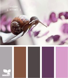 My bedroom colors.