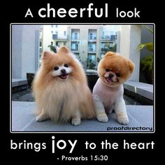 """A cheerful look brings joy to the heart."" - Proverbs 15:30"