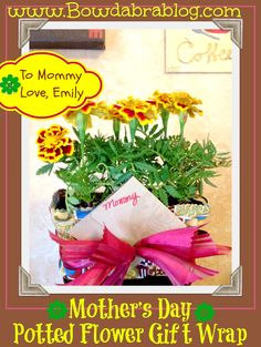 Mother's Day Potted Flower Wrapped Gift with Bowdabra Bow