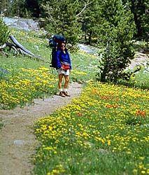 Explore Utah - Activities - Hiking in Utah