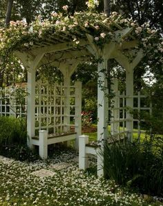 Eudora Welty's backyard trellis, covered with roses, Jackson Mississippi.