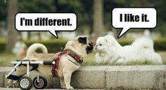 I`m different <3