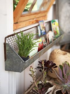 This old chick feeder (a flea market find) is an ideal spot to store old seed packets, catalogs, markers, reference books -- and even small potted plans. Or, take it inside and use as a ribbon rack, hold utensils in the kitchen, dry mixes in the pantry, brushes or paper goods in the bathroom. So many uses.