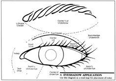 nail, eye shadow, shadow applic, applic diagram, eye makeup tips, beauti, appli eyeshadow, eyeshadows, hair