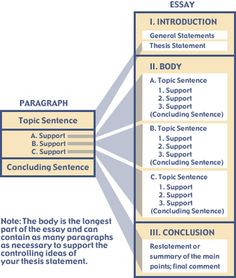 Basic guide to essay structure | UK Essay Writing